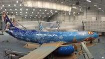westjet frozen-themed plane