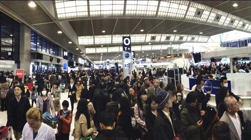 IATA press release freerangecouple_com