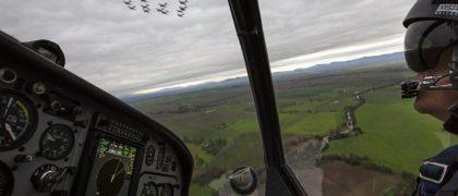 BFTS Marks 250,000 Flying Hours