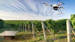 pomonaimpact.com-m-drone-labour